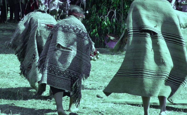 La vulneración del derecho a educación de los niños mapuche en medio de la militarización