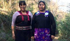 Mujer y territorio: La vida de las hermanas Ñancul en…
