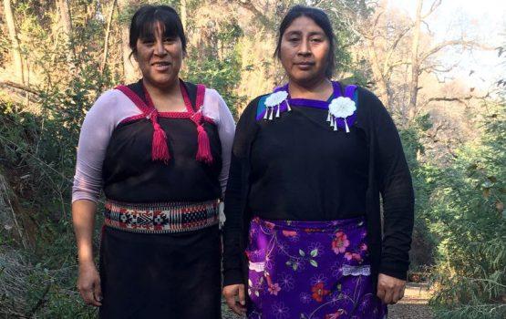 Mujer y territorio: La vida de las hermanas Ñancul en medio de la represión y persecución policial